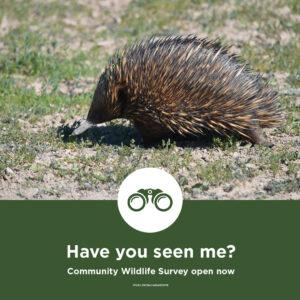 Community Wildlife Survey