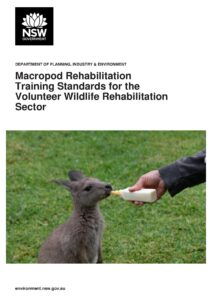 Link to DPIE guidelines for the initial treatment and care of rescued macropods