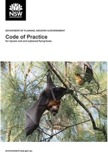 Front cover of code of practice for injured, sick & orphaned flying-foxes